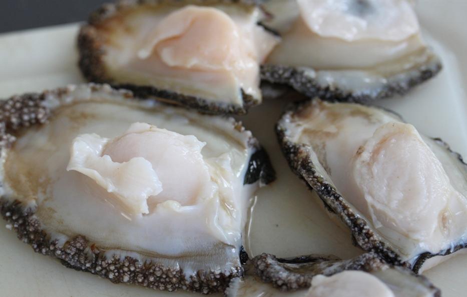 Como Cocinar Oreja   Como Cocinar Oreja De Mar O Abalon Umami Madrid