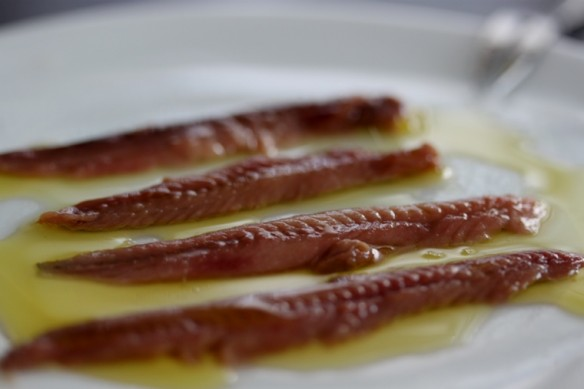 anchoas salmuera