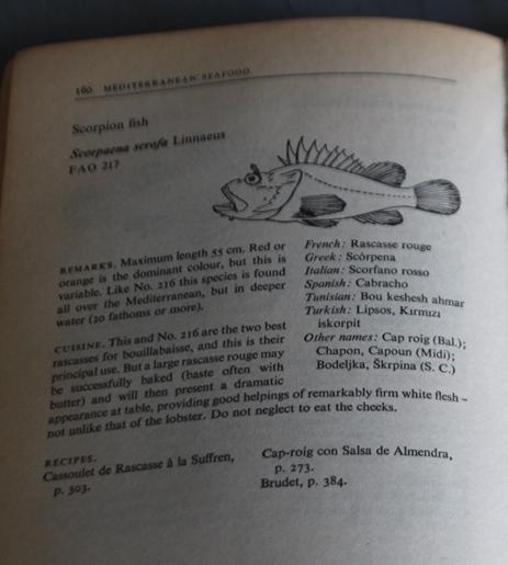 descripción med seafood