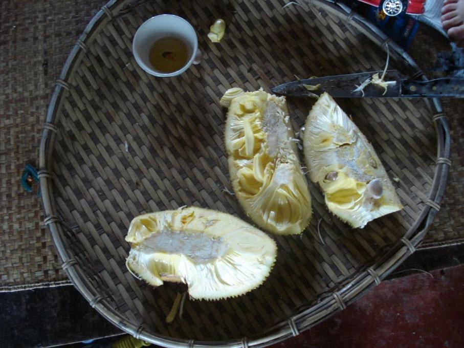 jackfruit-abierto
