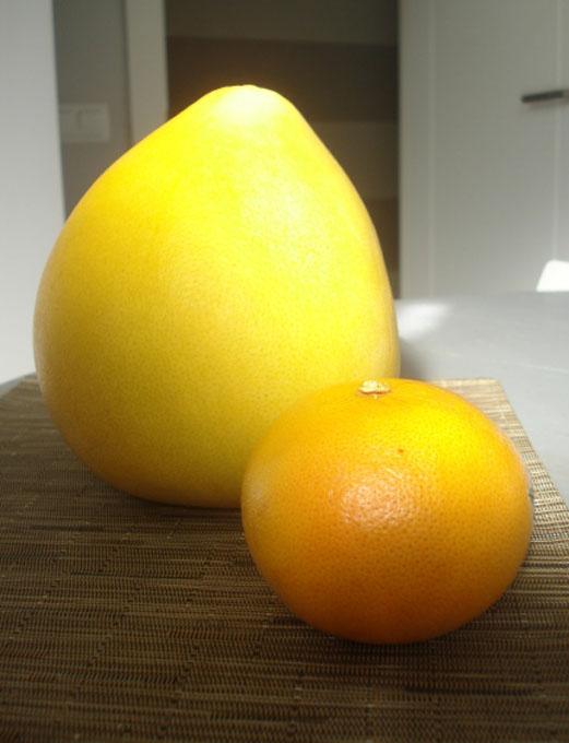 pomelo-y-naranja