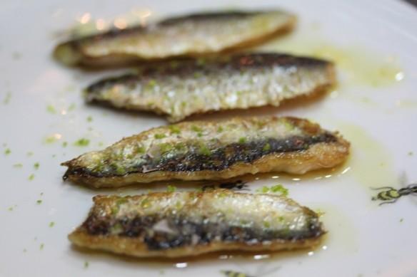 sardina final
