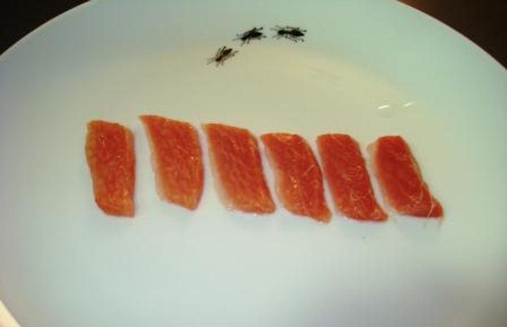 sashimi-toro.jpg